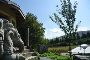 Ganesh keeping an eye on things at ty mam mawr off grid eco retreat centre