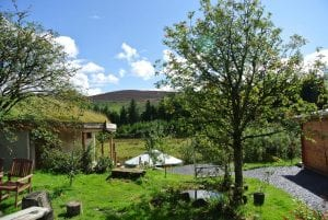 Rowan berries moel y henfaes and ty mam mawr straw bale roundhouse with the yurt in the background view 2