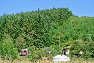 A view of both yurts from the field 2 off grid sustainable eco glampsite and glamping