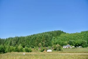 A view of both yurts from the field off grid sustainable eco glampsite and glamping