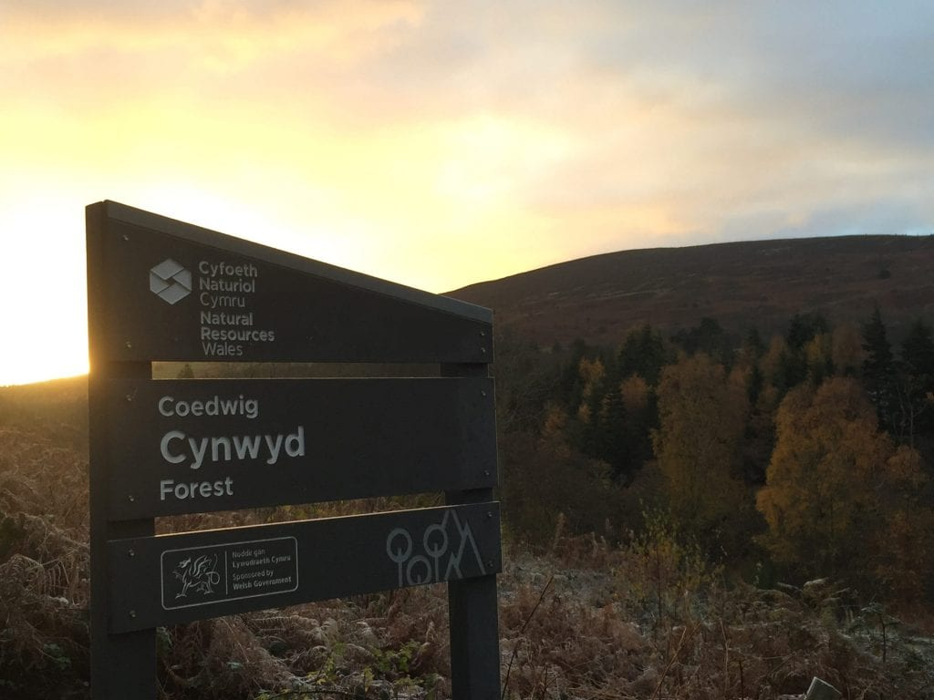 Cynwyd forest sign and moel henfaes off grid sustainable eco glampsite and glamping