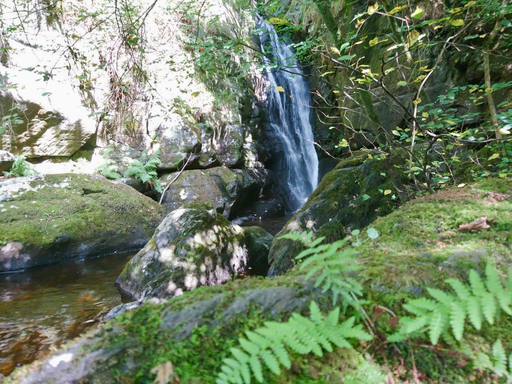 Cynwyd forest waterfalls and gorge off grid sustainable eco glampsite and glamping
