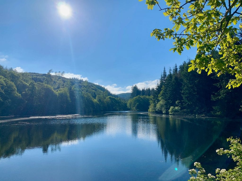 Cynwyd forest and the reservoir... off grid sustainable eco glampsite and glamping