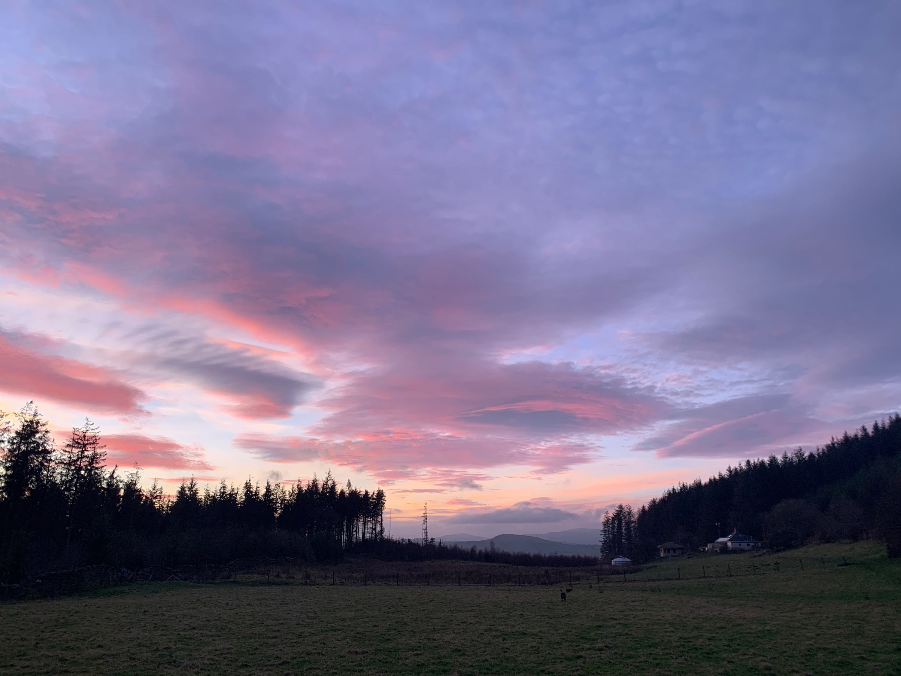 Pink purple blue sky at night.... off grid sustainable eco glampsite and glamping