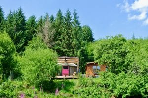 Ty crwn bach idris yurt 25 off grid sustainable eco glampsite and glamping