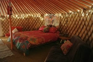 Ty crwn mawr yurt interior 18 off grid sustainable eco glampsite and glamping