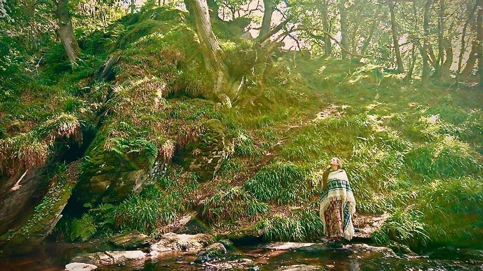 Small cynwyd ancient forest in the gorge above the waterfalls off grid sustainable eco glampsite and glamping